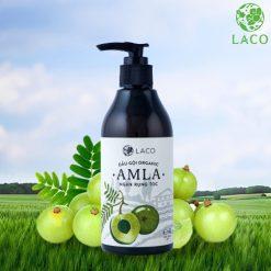 Dầu gội thảo dược Organic Amla Laco